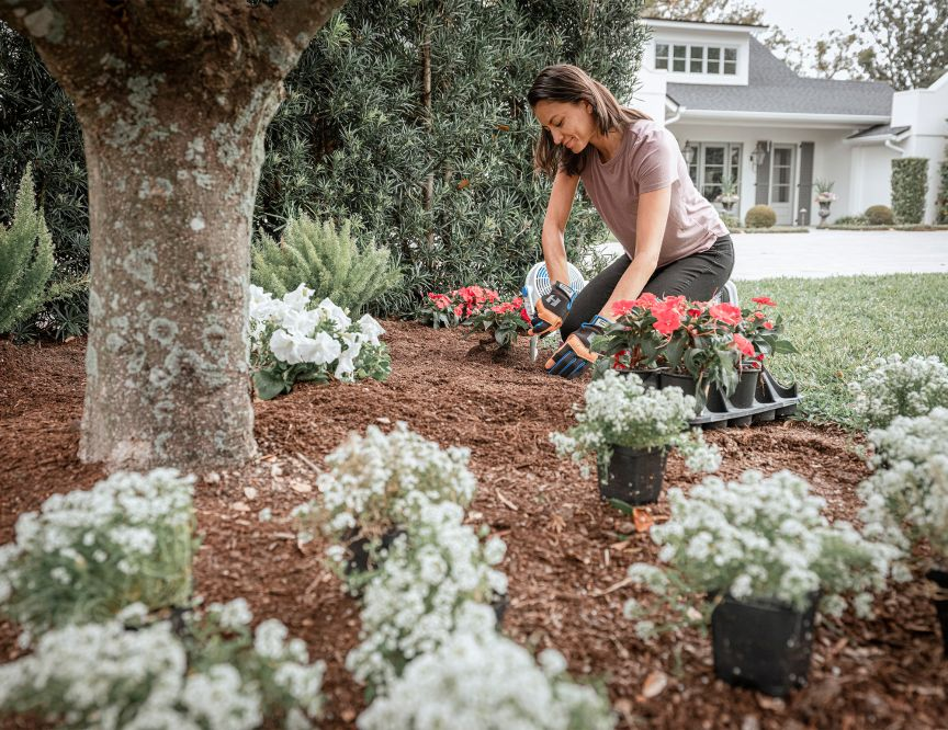 Get Your Yard Ready For Growing Seasonimage