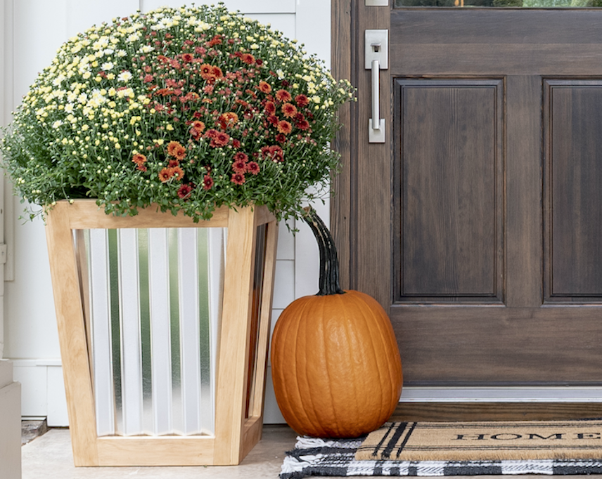 Instantly Elevate Your Fall Porch Decor With This DIY Mums Planterimage
