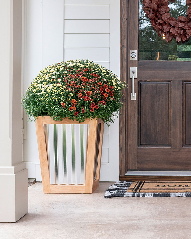 Instantly Elevate Your Fall Porch Decor With This DIY Mums Planter
